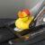 EV Duck